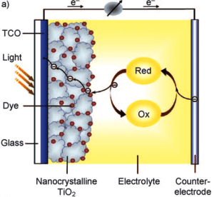 Photosynthesis and dye-sensitized solar cells (DSSC) // Figure 1: Scheme of a DSSC with a marked electron flow [2]