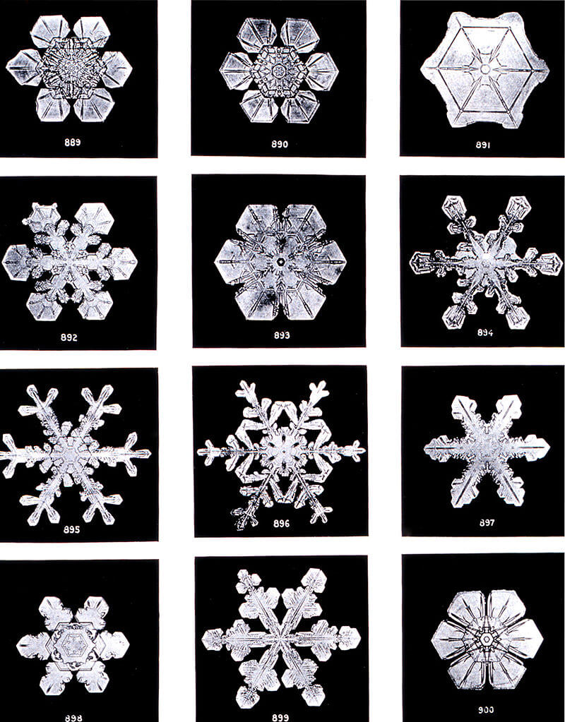 Figure:1: Snowflakes by Wilson Bentley, 1902. Snow is ice that grows from water vapor in Earth's atmosphere, which is why it usually displays crystal shapes.